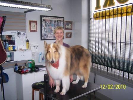 Dog Grooming Courtenay